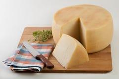 cunha do queijo Imagens de Stock