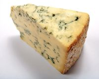 Cunha inglesa do queijo de Stilton Foto de Stock Royalty Free