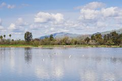 Cunningham Lake på en solig dag, San Jose, södra San Francisco Bay område, Kalifornien arkivfoto