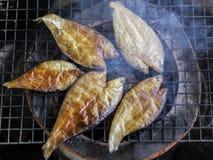 Cuocere i pesci alla griglia Immagine Stock