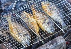 Cuocere i pesci alla griglia Fotografia Stock Libera da Diritti