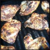 Cuocere pollo alla griglia Fotografia Stock Libera da Diritti