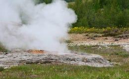 Cuocia a vapore l'aumento dalla terra nell'area geotermica Fotografie Stock