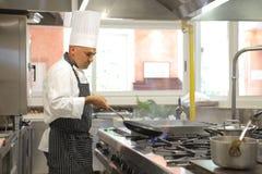 Cuoco Immagine Stock