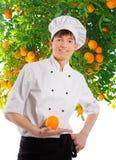 Cuoco Immagini Stock Libere da Diritti