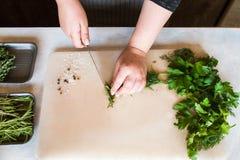 Cuoco che taglia le piante aromatiche a pezzi sullo scrittorio di legno Immagine Stock