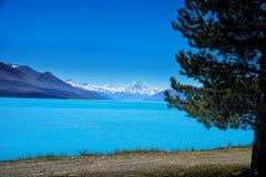 Cuoco del supporto di Pukaki del lago Fotografia Stock Libera da Diritti