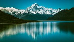 Cuoco del supporto in Nuova Zelanda Fotografie Stock Libere da Diritti