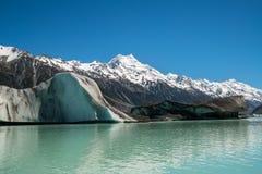 Cuoco di Mt osservato dal lago Tasman, Nuova Zelanda Immagini Stock