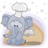 Cuoco Elephant Fotografia Stock Libera da Diritti