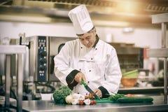 Cuoco unico che affetta i pomodori in cucina professionale Fotografia Stock