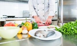 Cuoco unico che prepara le verdure e pesce per cucinare Fotografia Stock
