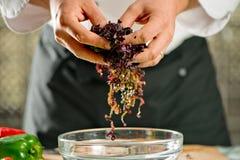 Cuoco unico che produce un'insalata con le cipolle Immagine Stock