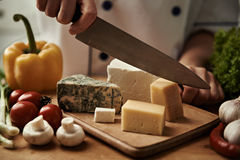Cuoco unico con il piatto di formaggio Immagini Stock Libere da Diritti