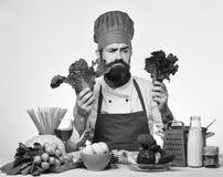 Cuoco unico con le verdure su fondo bianco Cuoco maschio con il fronte scontroso che tiene lattuga fresca Fotografie Stock Libere da Diritti