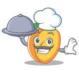 Cuoco unico con stile del fumetto della mascotte dell'albicocca dell'alimento Immagini Stock Libere da Diritti