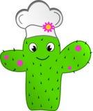Cuoco unico del cactus di modo Fotografia Stock