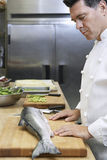 Cuoco unico maschio Observing Salmon In Kitchen Immagini Stock