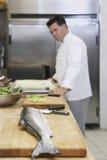 Cuoco unico maschio With Salmon In Kitchen Immagine Stock