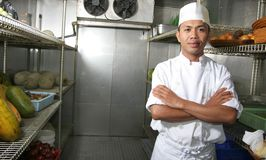 Cuoco unico nel frigorifero Immagine Stock