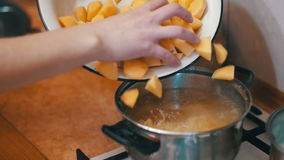 Cuoco unico Throws Sliced Potatoes della donna in un vaso per bollire la cucina domestica Moition lento stock footage