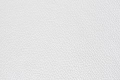 Cuoio bianco Immagine Stock
