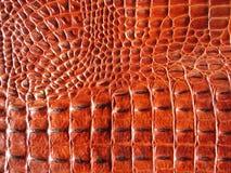 Cuoio del coccodrillo Fotografia Stock Libera da Diritti