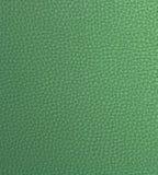 Cuoio falso verde chiaro Immagini Stock