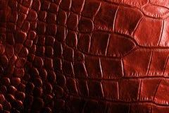 Cuoio strutturato del coccodrillo rosso Immagini Stock Libere da Diritti