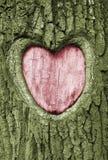 cuore Fotografia Stock Libera da Diritti