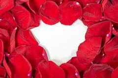 Cuore bianco con i petali rosa Fotografia Stock