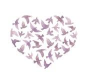 Cuore con gli uccelli per il giorno di S. Valentino watercolor Immagini Stock