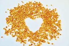 Cuore con l'olivello spinoso Fotografia Stock