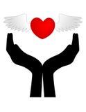 Cuore con le ali sulle mani Fotografie Stock Libere da Diritti