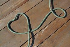 Cuore con le corde Immagine Stock