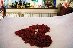 Cuore dai petali Immagine Stock Libera da Diritti