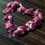 Cuore dai petali del fiore Fotografie Stock