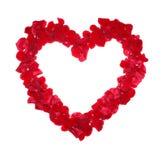 Cuore dai petali una rosa, isolata. Immagini Stock Libere da Diritti