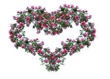 Cuore dalle rose. Fotografie Stock Libere da Diritti