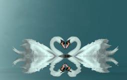 Cuore dei cigni di amore Fotografia Stock Libera da Diritti