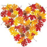 Cuore dei fogli di autunno Fotografie Stock