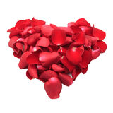 Cuore dei petali di rosa rossa isolati su fondo bianco Immagine Stock
