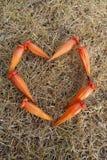 cuore del ‰ del ¹ del à sul fondo dell'erba Fotografia Stock Libera da Diritti