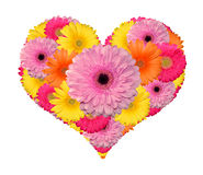 Cuore del fiore Immagine Stock Libera da Diritti