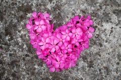 Cuore del fiore sul pavimento Fotografia Stock Libera da Diritti