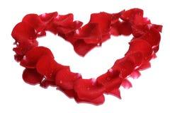 Cuore del petalo di Rosa Fotografia Stock