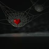 Cuore del ragno Fotografia Stock Libera da Diritti