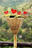 Cuore del San Valentino Immagini Stock