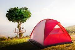 Cuore dell'albero con la tenda rossa fotografia stock libera da diritti