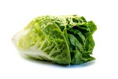 Cuore dell'insalata verde isolato su fondo bianco fotografia stock